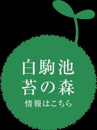 青苔荘【公式ホームページ】 -
